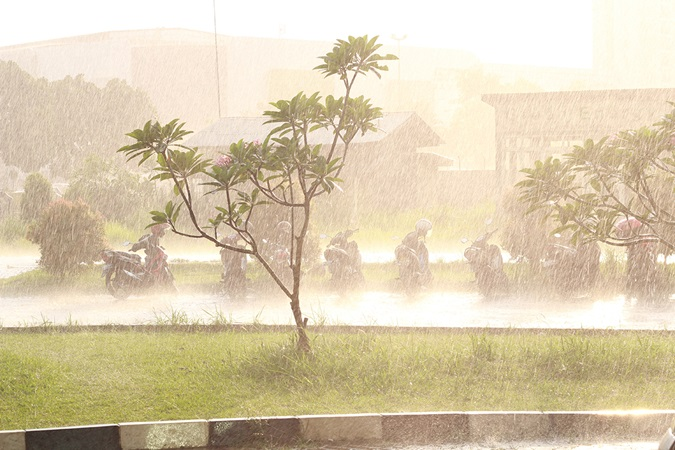 downpour with a row of parked mopeds getting drenched