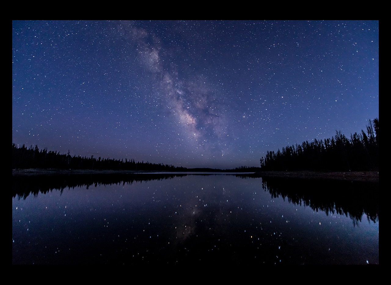 Lake with trees and reflection of stars