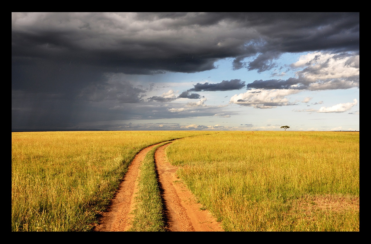 Dirt road in grassland with a storm approaching in distance