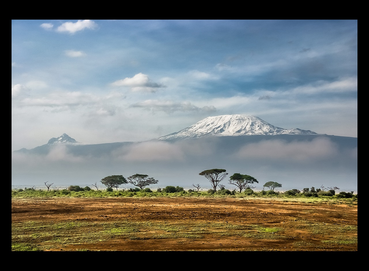 Savanna and trees with Mount Kilimanjaro in distance