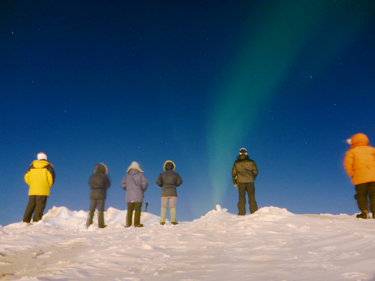 People looking up at the northern lights in Alaska