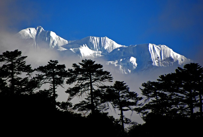 Picture of mountains with trees in the foreground in the Khumbu region near Mt. Everest