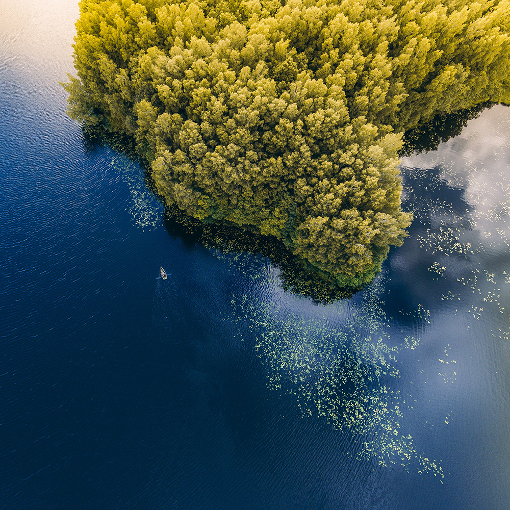 Aerial view of lake and trees in Lithuania