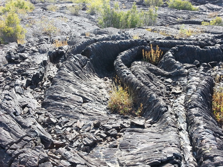 folded black lava rock field with sparse grasses