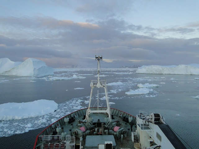 looking out over the bow Bow of the RSS James Clark Ross at a field of icebergs