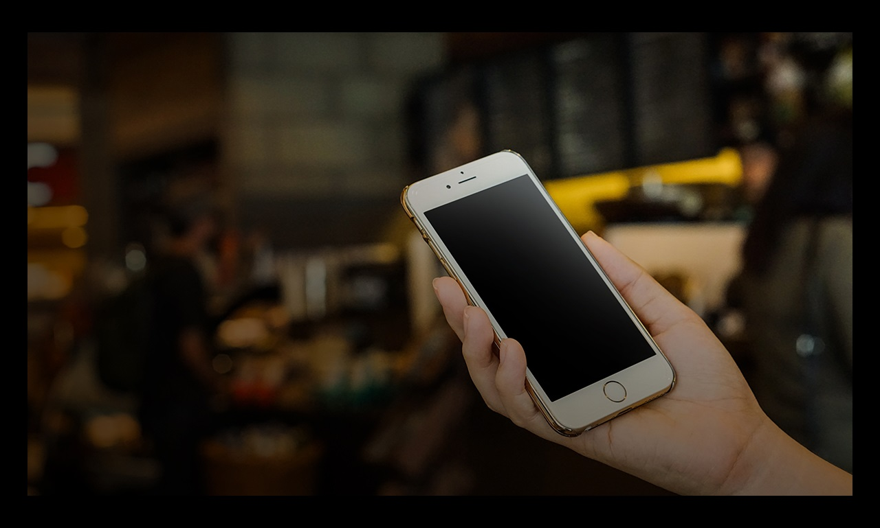 person holding phone with blank screen